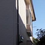 硝子交換 新年の陽光をきれいな窓から取り入れる