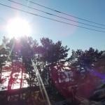 夏 暑さ対策 窓から熱さを防ぐ 日よけ 洋風すだれ取付